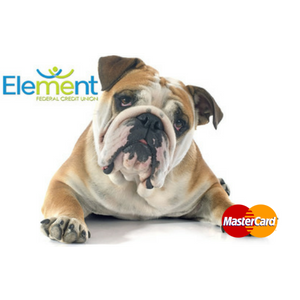 Debit Card Bulldog